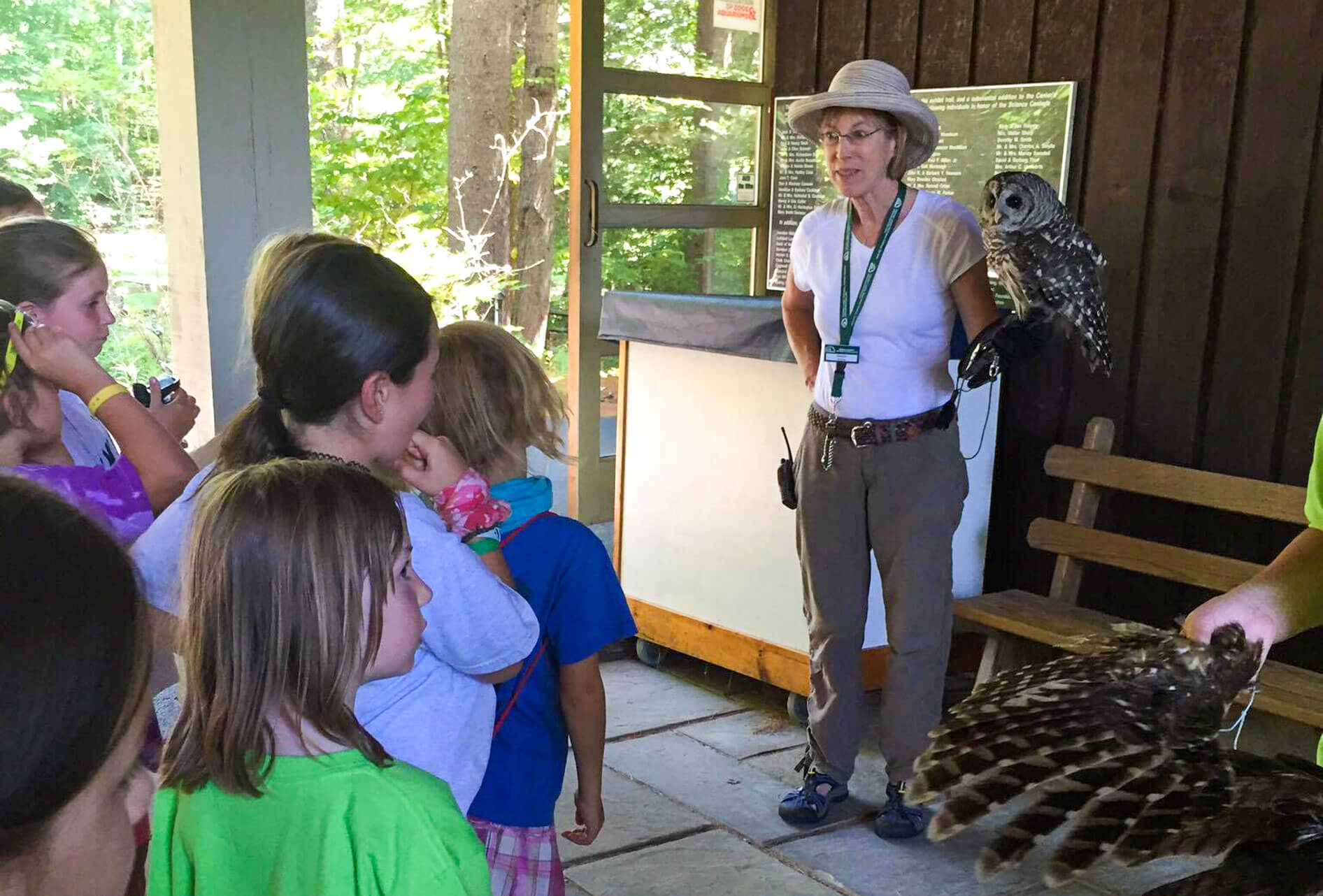 Young campers learn about owls
